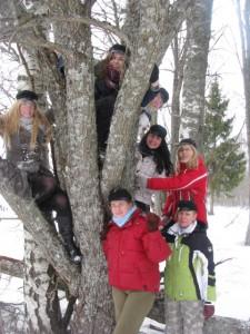 Puu otsa lennanud rebased (2011)